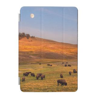 Haydenの谷で丘で牧草を食べるバイソン iPad Miniカバー