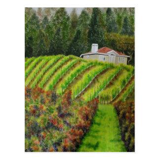 Healdsburgのカリフォルニアの郵便はがきのブドウ園 ポストカード