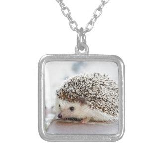 Hedgehog シルバープレートネックレス
