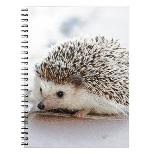 Hedgehog ノートブック
