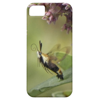 Hemaris Thysbe -ハチドリガ iPhone SE/5/5s ケース
