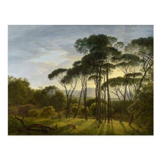 Hendrik Voogd著イタリアンな景色の高野槙 ポストカード