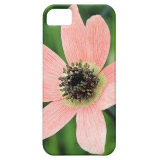 Hepaticasのアネモネ iPhone SE/5/5s ケース