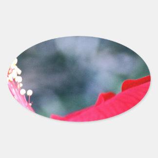 Hibiscus 4 sticker