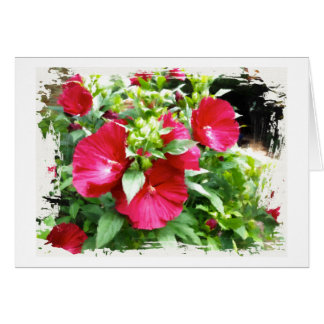 Hibiscus Birthday Greeting Card カード