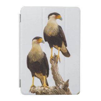 Hidalgo郡。 大人によって頂点に達されるカラカラ iPad miniカバー
