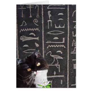 hieroglyphic背景が付いている子猫 カード