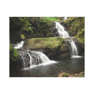 Hiloハワイの近くの流れそしてプール キャンバスプリント