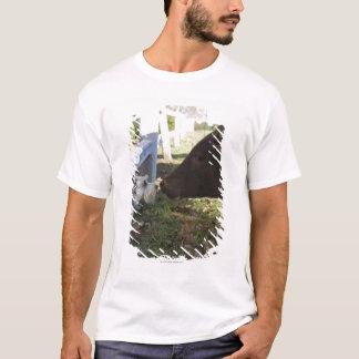 Hiltonの南ミッドランズ、KwaZuluの出生地域 Tシャツ