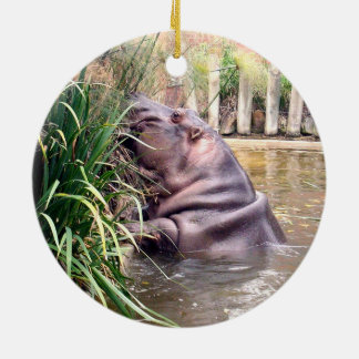 Hippo_Determination、_ セラミックオーナメント