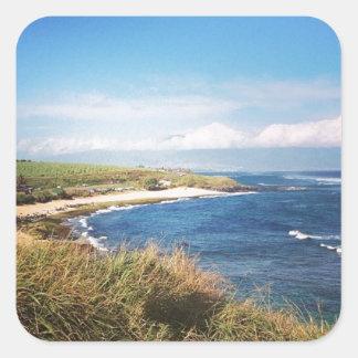 Ho `のokipaのビーチ、マウイ スクエアシール