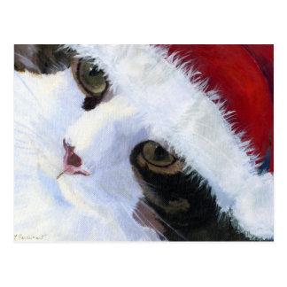 Ho Ho子猫猫 ポストカード