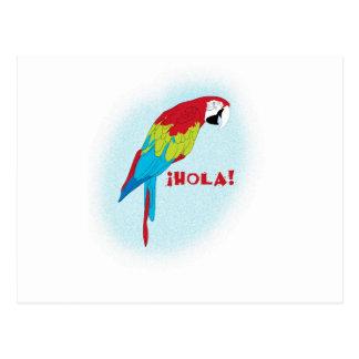 holaのオウム ポストカード