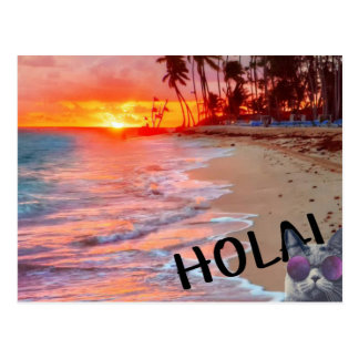 holaの子猫の郵便はがき ポストカード