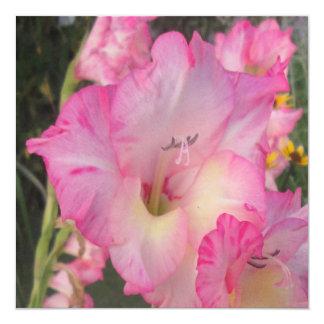 Hollyhockのピンクの白 カード