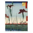 Horikiriのアイリス庭(堀切の花菖蒲) ポストカード