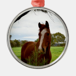 Horse_Smelling_A_Bushの_Silver_Metal_Ornament メタルオーナメント