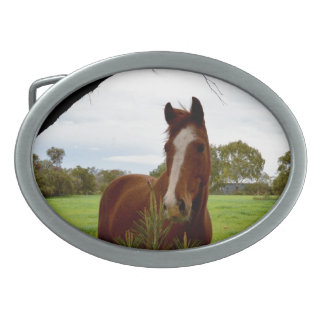 Horse_Sniffの_Oval_Belt_Buckle 卵形バックル