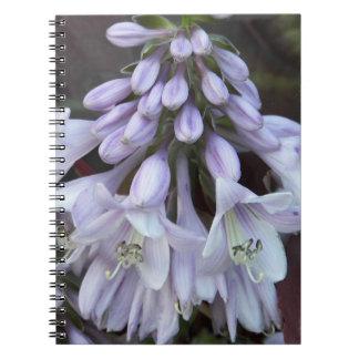 HostAによっては花柄が開花します ノートブック