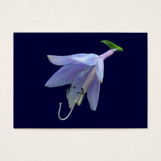 HostAの花の~ ATC 名刺