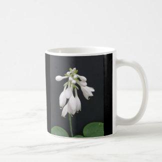 HostAの花 コーヒーマグカップ