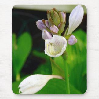 HostAの花 マウスパッド