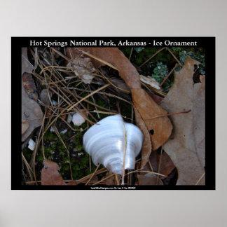 Hot Springsの国立公園、アーカンソー-氷のオーナメント ポスター