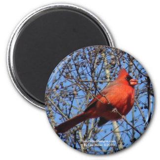 Hot Springs山の遊歩道の(鳥)ショウジョウコウカンチョウのギフト マグネット