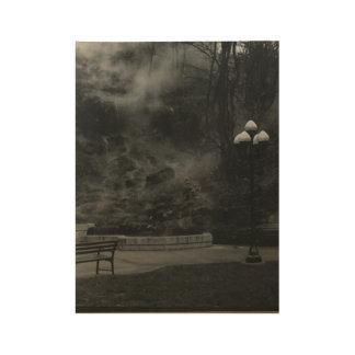 Hot Springs AR ウッドポスター