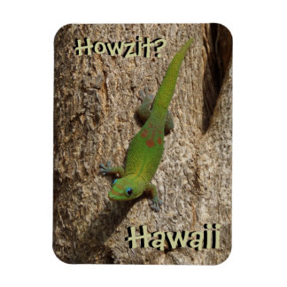 Howzitハワイのヤモリの熱帯長方形の磁石 マグネット