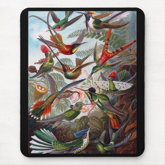 Hummingbird マウスパッド