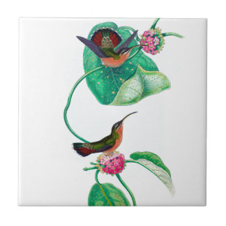 Hummingbird Love タイル