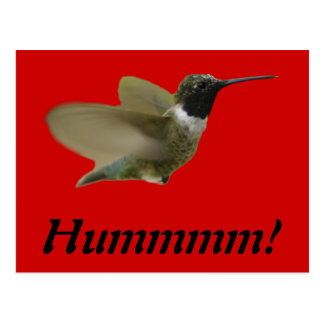 hummmmingハチドリ ポストカード