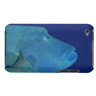 Humpheadのベラ2 Case-Mate iPod Touch ケース