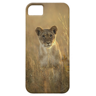 Hwangeの国立公園、ジンバブエ iPhone SE/5/5s ケース