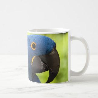 Hyacinthのコンゴウインコ コーヒーマグカップ