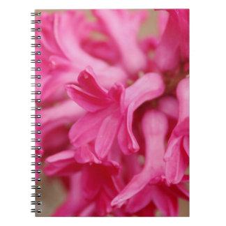 Hyacinthのピンク ノートブック