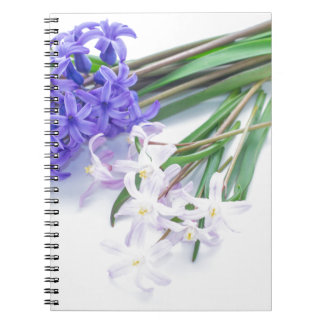 Hyacinth and chionodoxa ノートブック