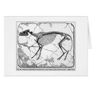 Hyracotheriumのventicolumの芸術カード グリーティングカード