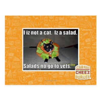 I izない猫。 Izサラダ ポストカード