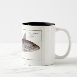 「Ichthyからのコダラ(Gadus Aeglefinus)のプレートLXII ツートーンマグカップ