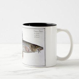 「IchthyoからのBarbel (Cyprinus Barbus)のプレートXVIII ツートーンマグカップ