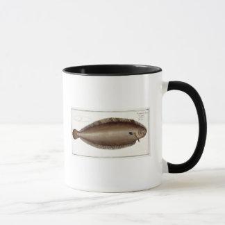 「Ichthyolからのドーバーの唯一の(Solea Solaea)プレートXLV マグカップ