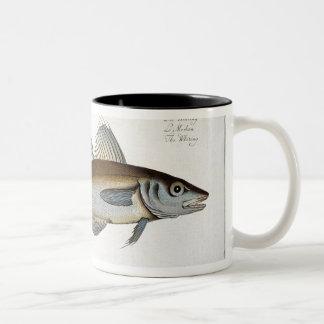 「Ichthyolからの白亜(GadusのMerlangus)のプレートLXV ツートーンマグカップ