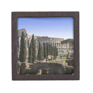 Il PalatinoからのローマのColosseumの台なし、 ギフトボックス