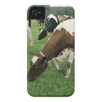 ima28991 Case-Mate iPhone 4 ケース
