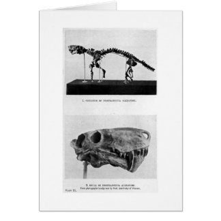 Inostranceviaのalexandriの芸術カード カード
