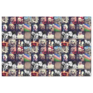 Instagramの写真のコラージュ-あなたのお気に入りのな写真の16 薄葉紙