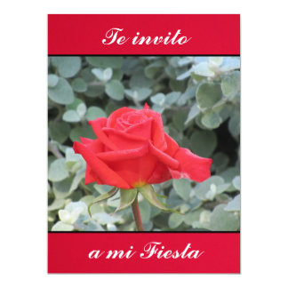 Invitación - Teのinvito miのフェスタ- LaローザRoja カード