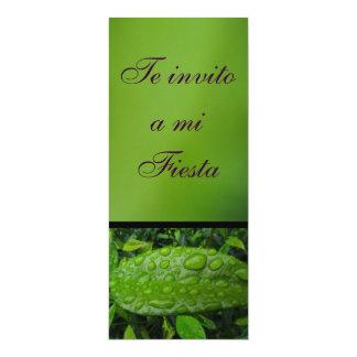 Invitación - Teのinvito miのフェスタ- Verde カード
